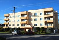 Available 1st December 1 Bed Apartment in 55+ Penticton Building