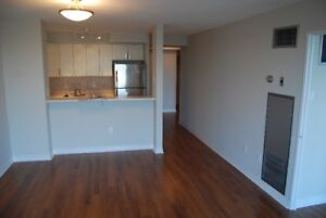 Recently renovated 1 bdrm + den condo at South Common Mall