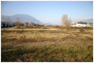 SALMON ARM DOWNTOWN DEVELOPMENT