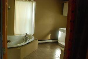 Petite maison dans un secteur résidentiel très tranquille Saint-Hyacinthe Québec image 5