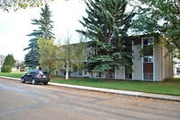 AVAILABLE MAY 16 -  Lacombe, Large Two Bdrm appartment for rent