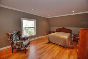 Fully Renovated home in Milton St. John's Newfoundland image 9