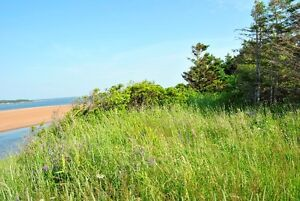 Rare Panoramic Ocean Front Lot in Anglo Rustico