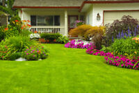 Ajax lawn cutting $35 & up