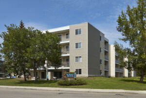 Gorgeous 1 Bedroom Condo - $500 MOVING ALLOWANCE