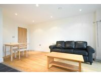 new build 2 bed 1 bath , great views, fully furnished . Canary wharf. private landlord