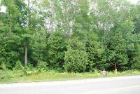 Build Your Dream Home Along The Shore Road - The Saugeen Team