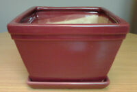 """Assorted """"Garden Plant Pottery & Planters"""" for sale"""