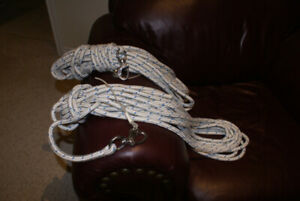 Spinnaker Halyard and Sheets/Guys