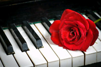 ❇️❇️❇️  PIANO LESSONS ANY AGE ANY LEVEL VARIOUS LOCATIONS