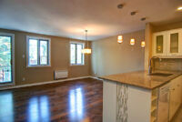 Beautiful renovated 2 bedroom condo in Plateau