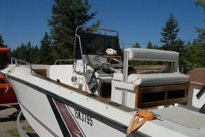 Centre Console Fishing Boat for sale