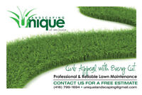 Lawn Maintenance Lawn Care Grass Cutting - Scarborough / Markham