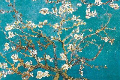 "Turqouis Blue Almond Blossoms by Vincent Van Gogh art poster 24x36"""