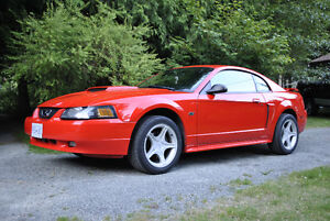 2001 Ford Mustang 8 cylinder Coupe (2 door)
