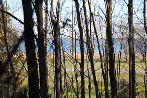 BUILD YOUR DREAM HOME ON THIS BEAUTIFUL WOODED LOT. Kingston Kingston Area image 5