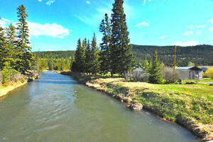 NEW PRICE!  REDUCED!! 2.94 Acres along the Crowsnest River