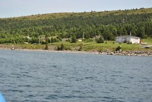 Oceanfront Property for Sale - Hr. Grace South, NL. St. John's Newfoundland image 5