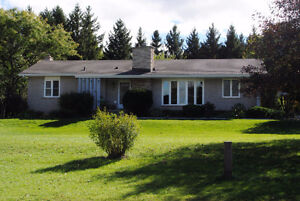 Immaculate Home on a 1/2 Acre Lot!