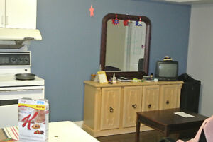 ONE BEDROOM BASEMENT APARTMENT FURNISHED