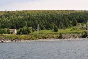 Oceanfront Property for Sale - Hr. Grace South, NL. St. John's Newfoundland image 7