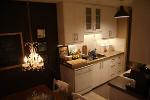 Hip 2 Bedroom Apartment close to NAIT and Grant MacEwan