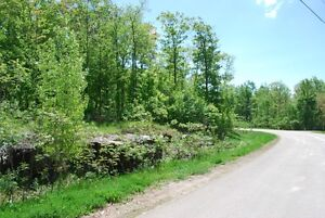 Building Lot with Access to Bobs Lake Kingston Kingston Area image 4