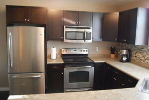 Executive Fully Furnished 2 Bedroom Condo-5 Mins to Downtown