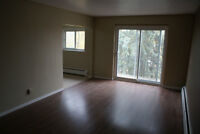 Renovated 4 Bedroom -2x the space of New Buildings!