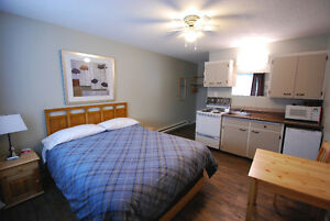 Immaculate One Bedroom + Studio Apartment Suites Available