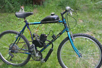 Gas power mountain bike