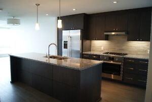 WATERFRONT Condo - Brand New Kings Wharf Unit