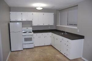 House - NOT a condo or apartment - It's a 1 bdrm basement suite