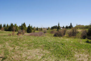 NEW PRICE! Vacant land with highway access & visibility