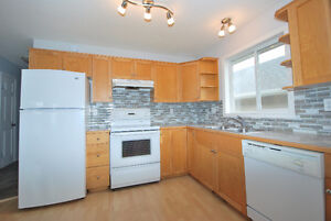 Large Family Friendly home on a quiet street with fenced yard