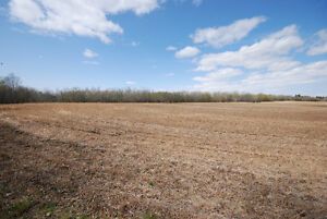 80 Acres Near South Cooking Lake