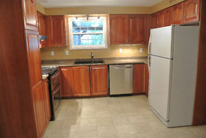 Cherry Maple Cabinets, sink, taps, counter for sale