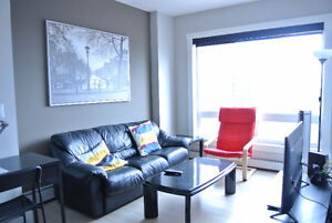 Furnished New One Bedroom Condo in the Ice District