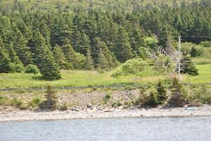 Oceanfront Property for Sale - Hr. Grace South, NL. St. John's Newfoundland image 4