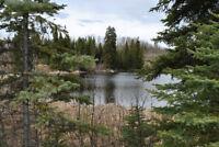 Beautiful 19 Acres of Lake Frontage Wawn Lake, Horsefly