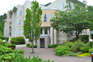 One Bedroom Mountain/River View Condo, Harrison Hot Springs