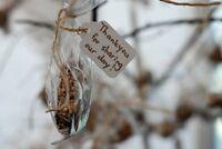 Wedding Favours - Bird Seed Balls