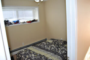 LARGE 1  BEDROOM APARTMENT IN MAYLAND HIEGHTS