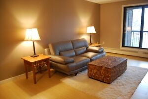 2BR Fully Furnished Executive Apartment - April 15, '17
