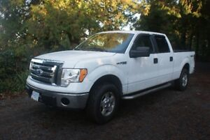 2010  Ford F150 XLT   4X4  CrewCab  long box