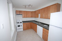 Beautiful and very clean recently renovated apartment in Barrie