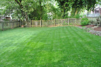 TRULY LOCAL LANDSCAPING & PROPERTY MAINTENANCE