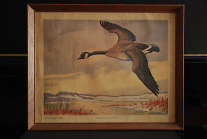 "Vintage framed print ""The Canada Goose"" Carling Collection"
