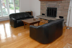 2 fauteuils cuir veritable