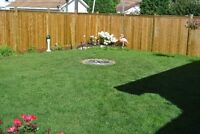 #1 Screened Black Topsoil and Landscaping